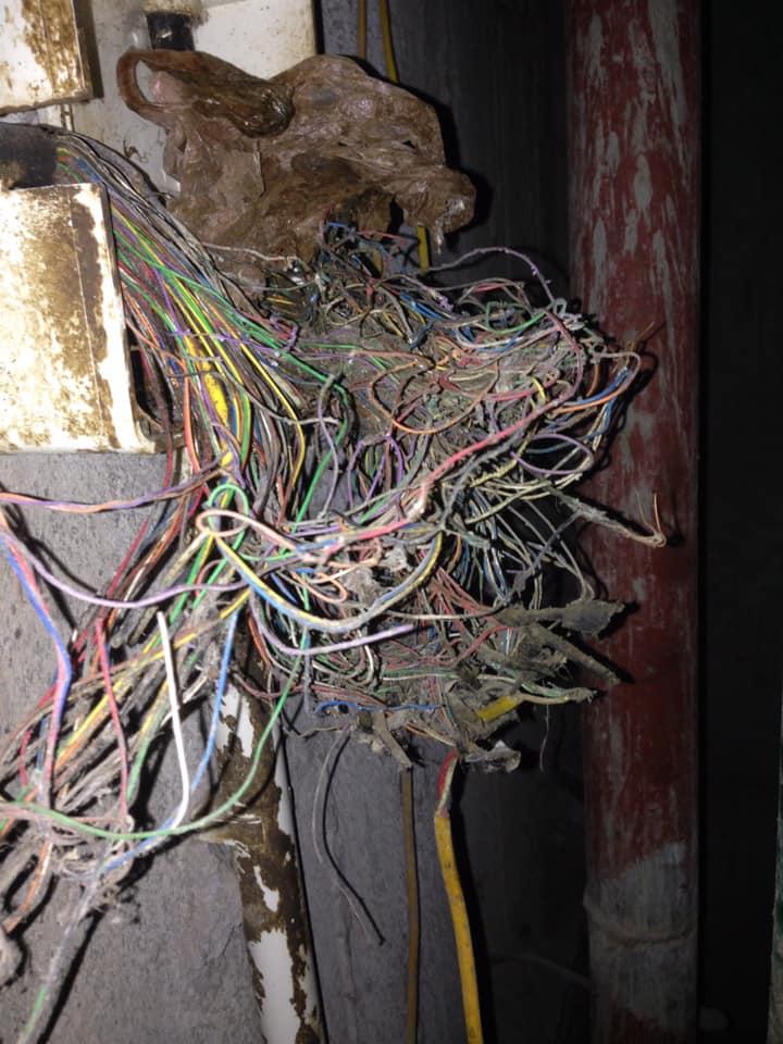 Khu vực hộp kỹ thuật bị đứt, rối, mất tín hiệu